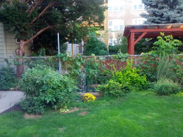 Garden - Late August 2012